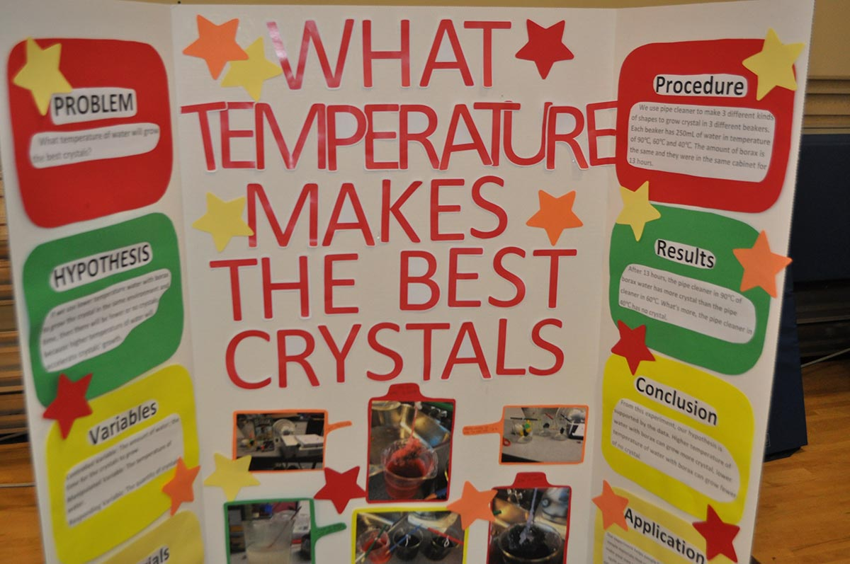 how to grow crystals science fair project