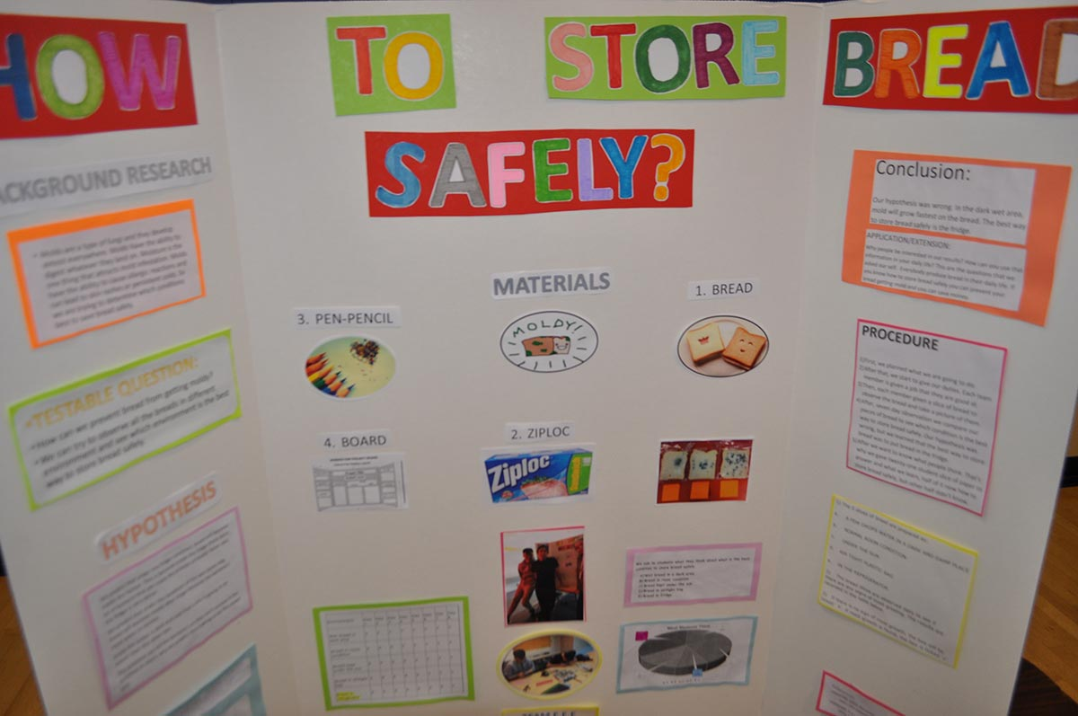 girly science fair projects Check out these amazing ideas for science fair projects for elementary students each of these ideas are simple enough that your child can take the lead.