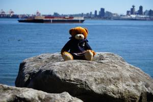 Bodwell Bears Photo Contest 2015 (2)