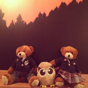 Bodwell Bears Photo Contest 2015 (36)