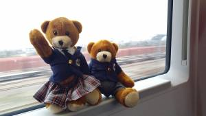Bodwell Bears Photo Contest 2015 (54)