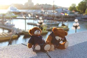 Bodwell Bears Photo Contest 2015 (5)