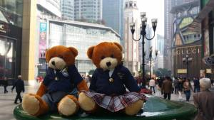 Bodwell Bears Photo Contest 2015 (60)