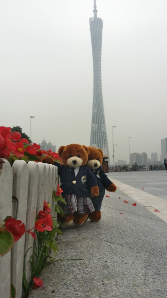 Bears in Guangzhou, China