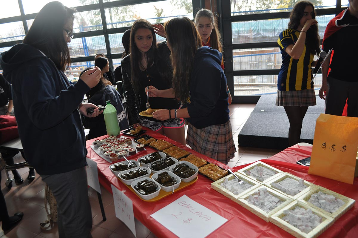 Turkish Cultural Day 2015 (3)