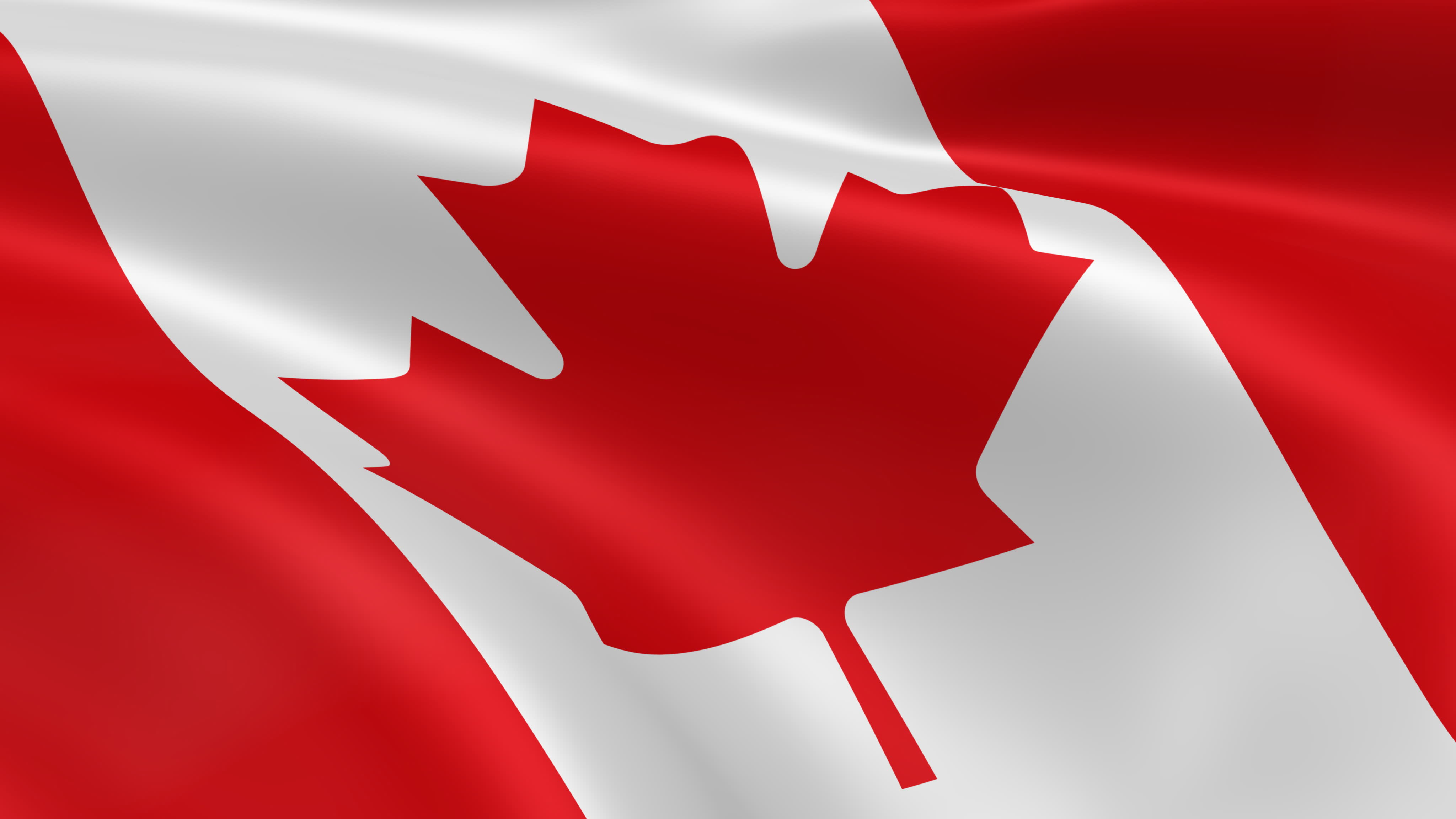Remembrance Day - Canadian Flag